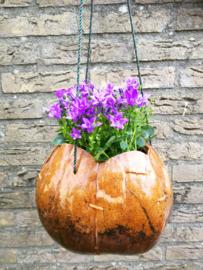 Kokosnoot plantenhanger.