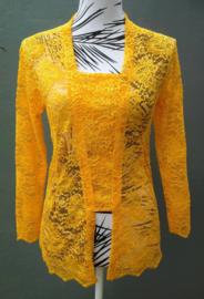 Uit de Aryani collectie van bijzonder verfijnd kant. Kebaya oranje/goud. Bovenwijdte tot 90 cm. Taille tot 80 cm. Lengte mouw 52 cm. Ned. maat 38/40.  100% elastische kanten rayon.