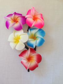 Haarspeldje Frangipani bloem klein.  Met brede plastic schuif. Per stuk. Kleuren kunnen verschillen met het voorbeeld.  In rood, paars, groen en wit.