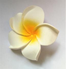 Haarspeldje Frangipani bloem wit, diameter 6 cm. Met brede plastic schuif. Levering uit assorti.
