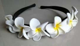 Diadeem met witte frangipani bloemen. Kindermaat, stevig model.