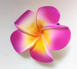 Haarspeldje Frangipani bloem paars, diameter 6 cm. Met brede plastic schuif. Levering uit assorti.