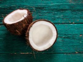 Haarconditioner op basis van Virgin Coconut Oil. Van Bali Alus. tube van 130 ml. Perfecte combi met de Gardenia shampoo.