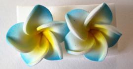Frangipani oorstekers blauw