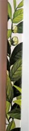 Helende aromatherpie. Green Tea wierook sticks. Niet walmend door unieke bewerking. Ondergedompeld in pure bloemenolie. Brandtijd 45 minuten per stick.  Inhoud 10 sticks