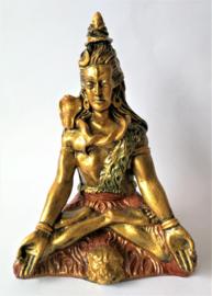 Lord Shiva, het allerhoogste wezen uit het Hindoeïsme.