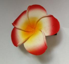 Haarspeldje Frangipani bloem rood, diameter 6 cm. Met brede plastic schuif. Levering uit assorti.