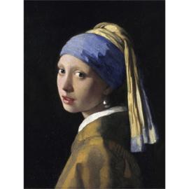 AluArt - Girl Pearl Earring 120x180