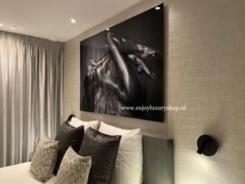 Cobra Art plexiglas | Lady Nude
