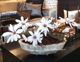 Schelpenvaas kleine boot met magnolia