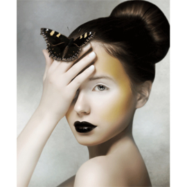 AluArt Kunstwerk - Girl With Butterfly