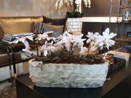Schelpenbak bruin/rosé opgemaakt met magnolia