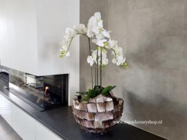 Schelpenvaas 'Broken Bowl' opgemaakt met orchidee - bruin/rosé