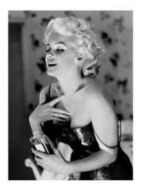 Spiegellijst Marilyn Monroe Chanel No5