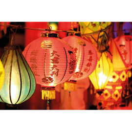 AluArt - Chinese Lantern 80x120