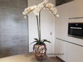 Schelpenpot met orchidee - bruin (24x17)