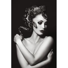 AluArt - Snake head 120x180