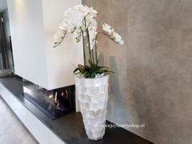 Hoge schelpenvaas (60) opgemaakt met orchideeën