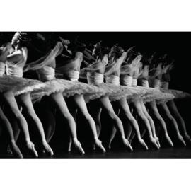 AluArt - Ballet La Bayadere 80x120