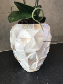 Schelpenpot met orchidee - wit (24x17)