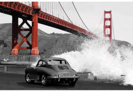 AluArt Kunstwerk - Under the Golden Gate Bridge