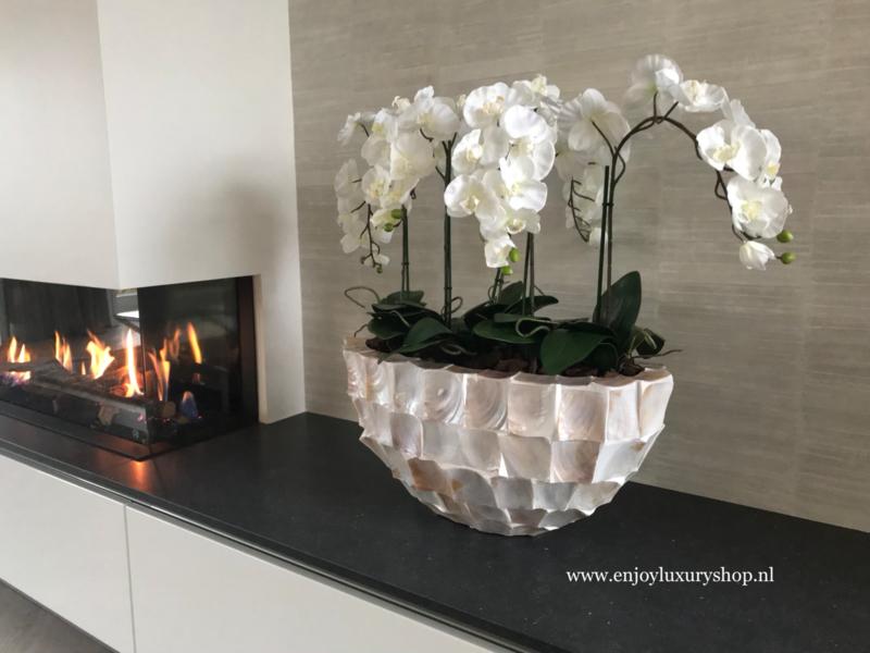 Schelpenvaas boot met orchideeën - parelmoer wit (Bo)