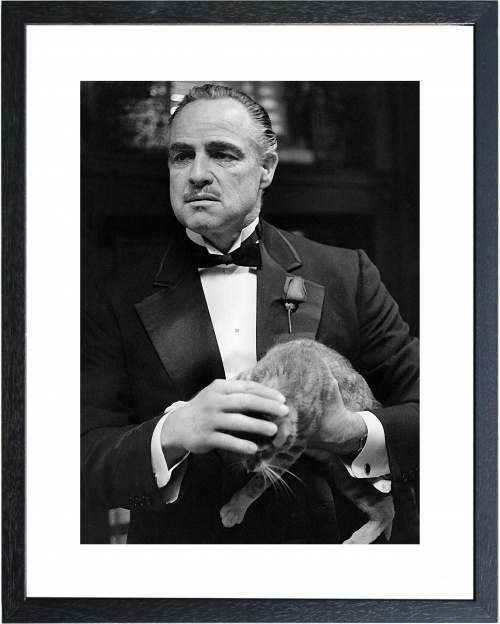 Fotolijst zwart wit Marlon Brando | The Godfather Cat