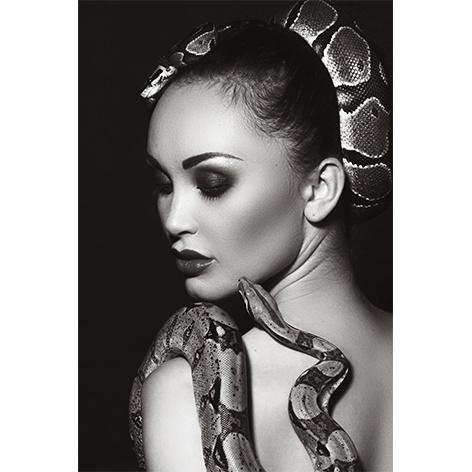 AluArt - Snake Shoulder 80x120