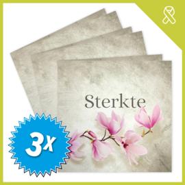 MUZIEKWENSKAART - STERKTE (60 SEC.) x3