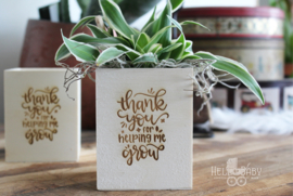 Pennen houder thank you for helping me grow zonder plantje