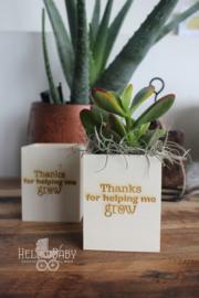 "Pennenhouder ""Thanks for making me grow "" zonder plantje"