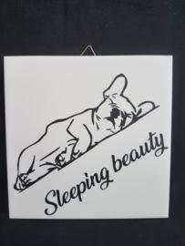 Tegeltje sleeping beauty