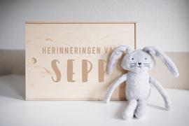 Herinneringsbox | Sepp