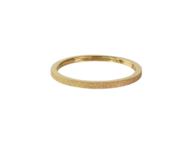 Ring Sanded Gold Steel
