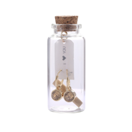 Oorbellen Message in a bottle - Gold stone goud