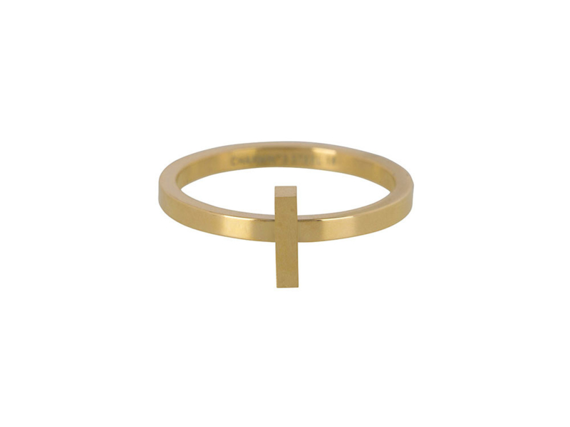 Ring Hope Gold Steel