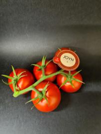 'Joyn' tomaatjes