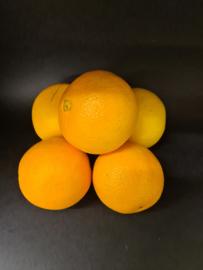 Sinaasappels navelina