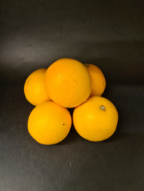 Sinaasappels hand/pers