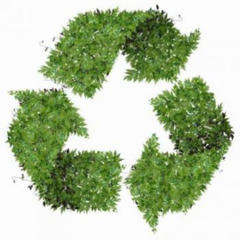 Hoe duurzaam is jouw onderneming?