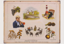 Ansichtkaart Koningshuis en Buitenleven
