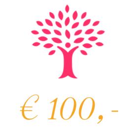 Sponsorbedrag 100 euro