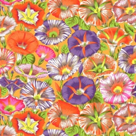 Kaffe Fassett Collective PWPJ098 ORANGE Variegated Morning Glory