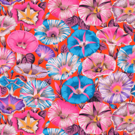 Kaffe Fassett Collective PWPJ098 RED variegated Morning Glory