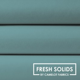 Patchwork Promotions Timeless Treasures Camelot Fresh Solids 214-0045