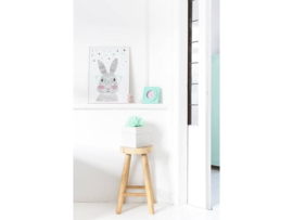 Poster Mr. Rabbit A3-formaat