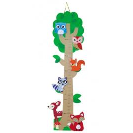 Meetlat hout regenwoud
