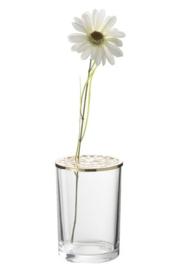 Soliflor glas met goud S