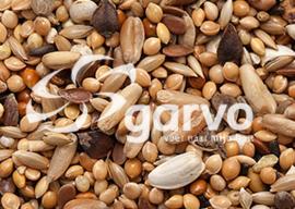 Garvo Agapornidenzaad 1 kg