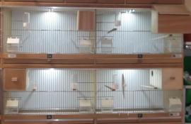 Kooien met benummering en diverse nestkasten